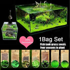5g/bag Aquarium Plant Seeds Fish Tank Aquatic Water Grass Foreground Easy Plant.