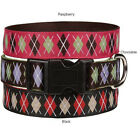 Academy Argyle Nylon Dog Collar East Side Collection