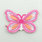 Fuchsia Butterfly Sew/Iron On Embroidered Patch P0053