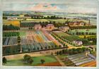 Wilsons Back Vintage Seed Cover Picture Art Print Canvas Poster A4 A3 A2 A1