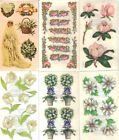 FLOWERS Sticker Sheets FMI Frances Meyer Choice GARDEN FLORAL ROSE TOPIARY &more