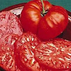 Brandywine Red Tomato HUGE Juicy and Tasty Tomatoes Free Shipping