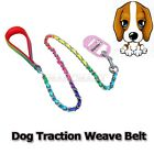 New fashion Rainbow color weave belt dog traction rope leashes chain Chrome plat