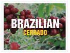 Up To 100 lbs Brazil Cerrado Arabica - natural 17/18 screen Green Coffee Beans