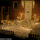 OUTDOOR LED 3D EATING/STANDING/RUNNING/LYING REINDEER FUR EFFECT CHRISTMAS LIGHT