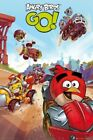 ANGRY BIRDS POSTER ~ GO DERBY 24x36  iPHONE APP Video Game GO!
