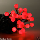 240 LED BERRY INDOOR OUTDOOR CHRISTMAS XMAS TREE PARTY FAIRY STRING LIGHTS 20M