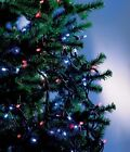MARK SLOJD EXTRA 50 PACK OF INDOOR / OUTDOOOR CHRISTMAS LIGHTS VARIOUS COLOURS