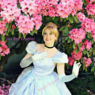 P169  new park version Cinderella costume made cosplay dress