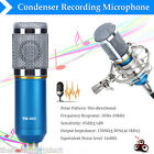 Pro Blue Condenser Dynamic Microphone Mic Sound Studio Recording Shock Mount