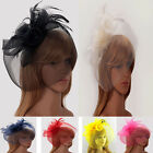 Ladies Women's Elegant Fascinator Headband Veil Hat Feather Mesh Wedding Races