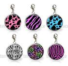 Animal Print 20mm Glass Top Clip On Charm Add on Bracelet Pick 1 or 6 Teen Gift