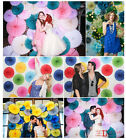 "10pcs 4'' 6"" 8"" 10"" 12"" Paper Wheel Fan Pom Flowers Backdrop Wedding Party Decor"