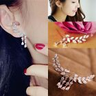 Women Fashion Gold Silver Vogue Crystal Zircon Leaves Tassel Ear Stud Earrings
