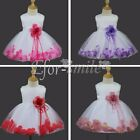 Flower Girls Princess Petal Dress Baby Wedding Party Pageant Christening Baptism