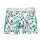 PULL-IN | Boxer Master homme PLANTIN