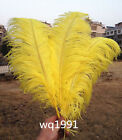 Wholesale 100-2000pcs Quality Natural yellow OSTRICH FEATHERS 14-16'inch/35-40cm