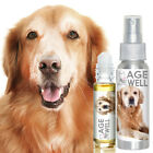 GOLDEN RETRIEVER AGE WELL DOG AROMATHERAPY SUPPORT FOR SENIOR DOG MEMORY, STRESS