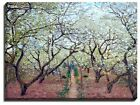Canvas Print, Claude Monet, Orchard in Bloom, 1879