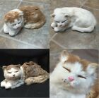 Dunhung Large Realistic Laying with Eyes Closed Cat Kitten Real Rabbit Fur CT986