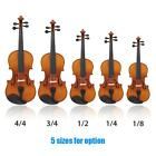 ammoon Violin Natural Acoustic Solid Wood for Beginner+Case+Rosin Hot Gift M0K3