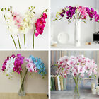 Colorful Butterfly Orchid Silk Flower Phalaenopsis Bouquet Home Wedding Decor