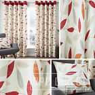 Pair of Leaves 100% Cotton Eyelet Ring Top Lined Curtains, Terracotta Orange Red