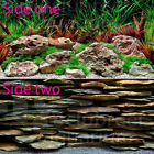 "Seaview Aquawild Planted/Stacked Slate Slateways 24"" Aquarium Background"