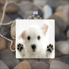 """CUTE PUPPY DOG"" WHITE DOG RUSSELL TERRIER GLASS TILE PENDANT NECKLACE KEYCHAIN"