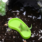 NW-03&  NW-04Reptiles Footprint Water Drinking  Bowl  Water food feeding