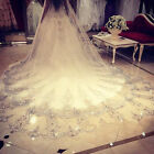 Crystals Bridal Wedding Veil Cathedral Long lace bride veil 1T & Comb Custom 4 M