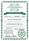 personalised letter from father Christmas Santa naughty nice certificate gift