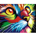 Home Decor Canvas Paint By Number Kit Oil Painting DIY Colorful Cat No Frame New