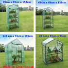 Green House Mini Portable Greenhouse Indoor Outdoor Plant Gardening Greenhouse A