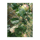Yuzet Anti Bird Netting Crop Veg Plant Protection Fruit Fish Pond Net Mesh