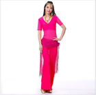 Mesh Short Sleeves Blouse+Long Pants+Sequins Hip Scarf 3pcs Belly Dance Costumes