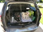 PET WORLD FORD MONDEO ESTATE CAR DOG CAGE BOOT TRAVEL SAFETY CRATE PUPPY