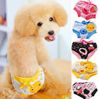 Dog Puppy Pet Diaper Pants Physiological Sanitary Short Panty Underwear S/M/L/XL