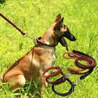 Geniune Leather Large Pets Dog Traction Rope Walking Training Collar Lead Leash