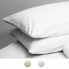Linens Limited 100% Egyptian Cotton 200 Thread Count Housewife Pillowcases, Pair