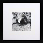 8x8 Black Gallery Picture Frame with 4x4 Mat - Wide Molding - Includes both and