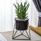Nordic Style Geometric Metal Stand with Ceramic Planter
