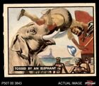 1950 Topps Bring Em Back Alive #91 Tossed By An Elephant EX