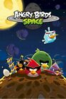 ANGRY BIRDS POSTER ~ SPACE ASTEROIDS 24x36 iPHONE APP Video Game