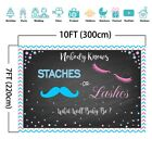 Staches or Lashes Gender Reveal Backdrop Boy Girl Gender Reveal Vinyl Backdrop
