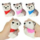 Soft S quishy Huskie Puppy Dog Toy Scented Cream Slow Rising Squeeze Toys
