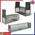 Steel Live Catch Trap with Door Humane for Cat Fox Small Animal Trap Mesh Holes