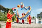 New CHINESE DRAGON DANCE 3.1m Folk Festival Costume For 4 children stage prop