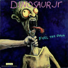 Feel The Pain - Etched Dinosaur Jr 10