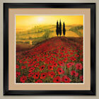 32W*x32H*: POPPY FIELD by STEVE THOMS - RED POPPIES DOUBLE MATTE, GLASS & FRAME